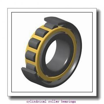 45 mm x 100 mm x 25 mm  FAG N309-E-TVP2  Cylindrical Roller Bearings