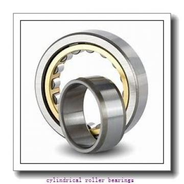 FAG N315-E-M1  Cylindrical Roller Bearings